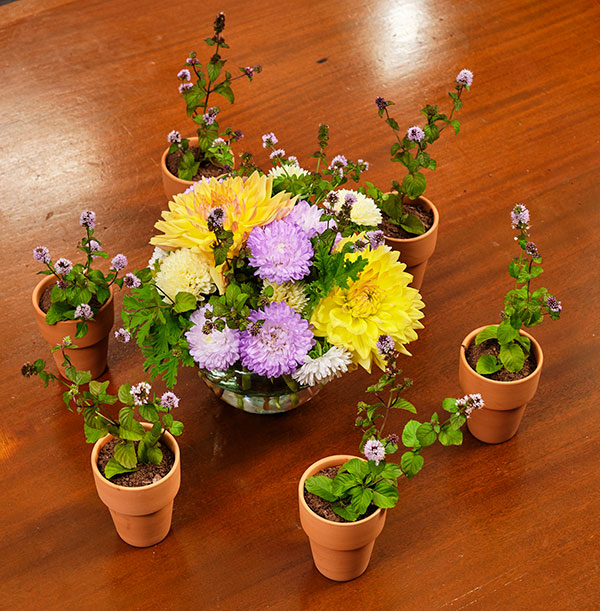 Here's a fun Recipe in Bloom- the Dirt Cake- it's a great way to have Fun with Flowers!