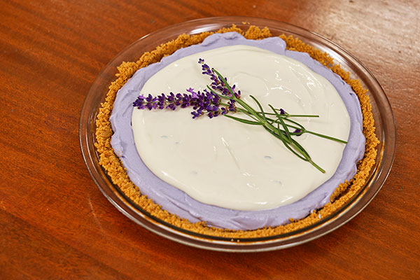 This Instant Cheesecake Recipe is easy- and adding a subtle Lavender flavor is not only delicious- it creates an eye-catching presentation.