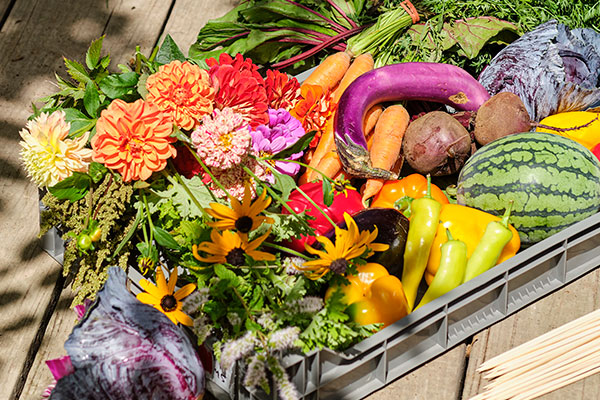 Some of the Beautiful Vegetables from Full Hollow- waiting to be arranged- with a few flowers- what a treat!