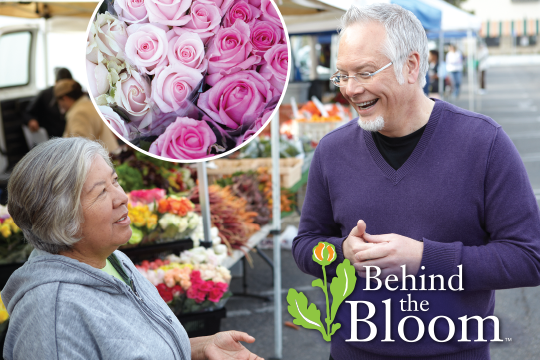 Behind the Bloom - Eufloria's Farmers Market