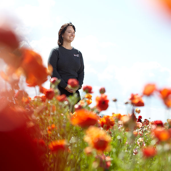 Michelle is always at the ready- to share the stories- and insights- behind the Flower Fields in Carlsbad!