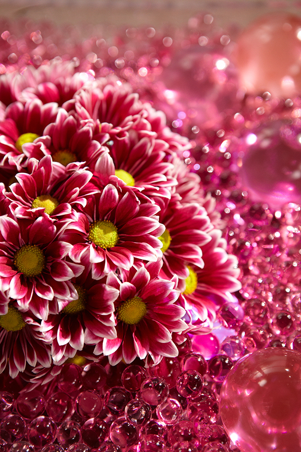 Deco Beads (water storing beads) are a great accent to the Heart of Daisies!