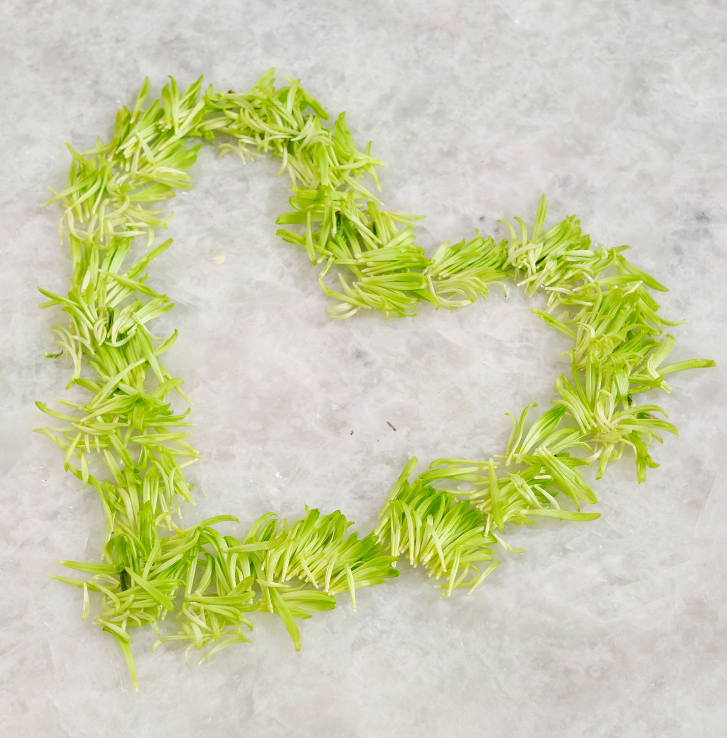 It's easy to create a heart shape with flower petals- here I used Green Fugi Spray Chrysanthemum petals...
