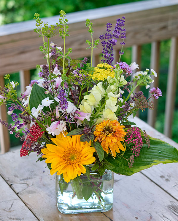 Plant Flowers Bees Love- not only for your garden but also for arranging- Pollinators love Flowers!