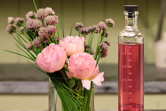 Chive Blossom Vinegar - Recipe in Bloom!
