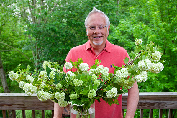 Learn more about Snowball Viburnum - the featured flower in this Episode of Life in Bloom!