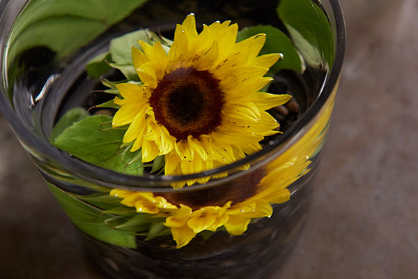 What flower will you submerge? Give it a try- and share it with me - at J@UBloom.com- I want to see what you create!