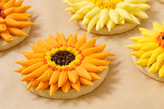 SunFlowers- Sunshine Flower Episode #312