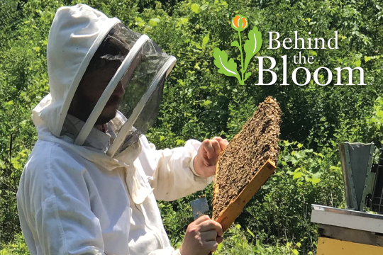 Behind the Bloom_Aberdeen Apiary and Beekeeper Jason!