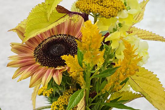 Queen Bee Vase Arrangement