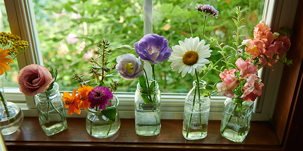 """Simple Easy to create Flower projects- are part of each """"Life in Bloom"""" episode."""