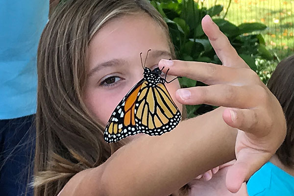 After the hard work- the Monarchs are released- part of the process- and education that Laura provides and sustains in her children!