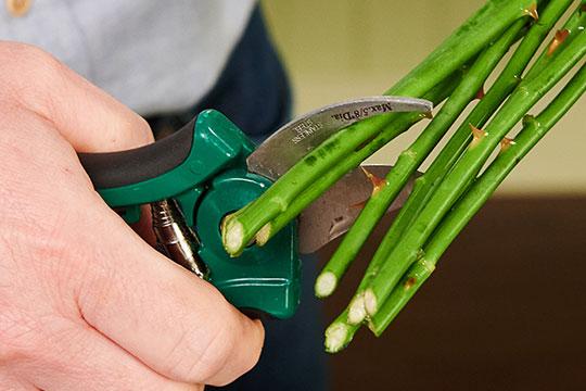 Favorite Flower Arranging Tools